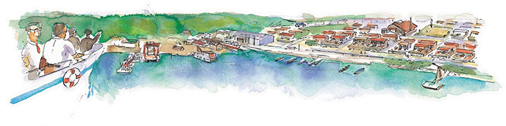1.プロローグ - 創業者南景樹の大島視察